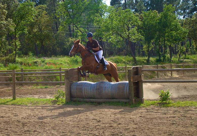 ecole-francaise-equitation-merindol